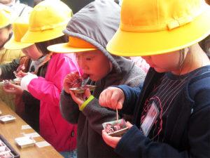 富山市北商工会女性部の協力による「ゆでたホタルイカの試食」